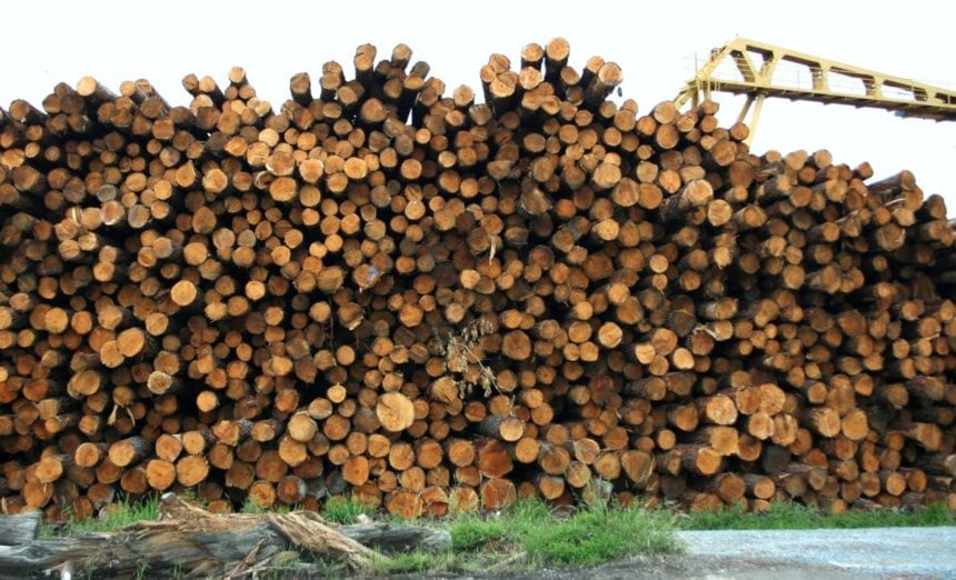 Company to build lumber mill that's expected to employ 125