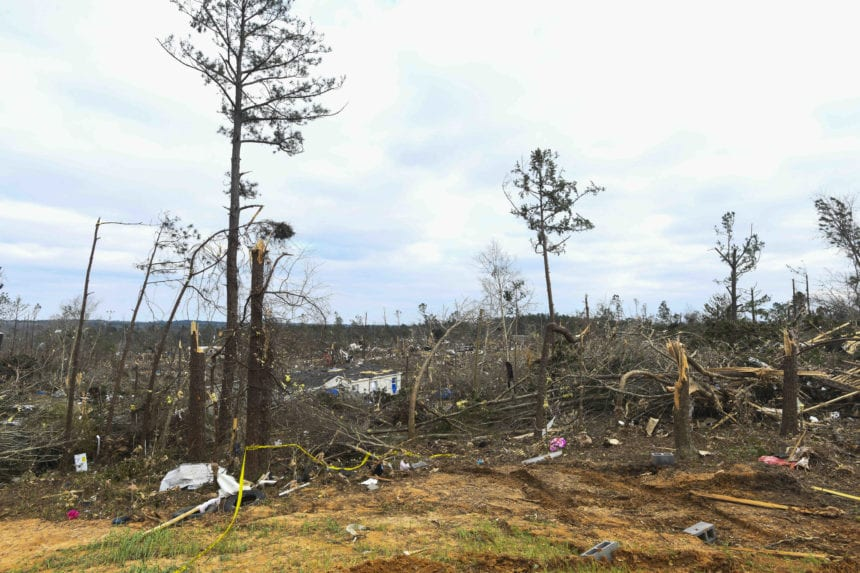 Tornadoes did nearly $5.9 million damage to timberland