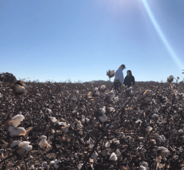 Roby urges Ag Secretary to declare farm emergency in Wiregrass