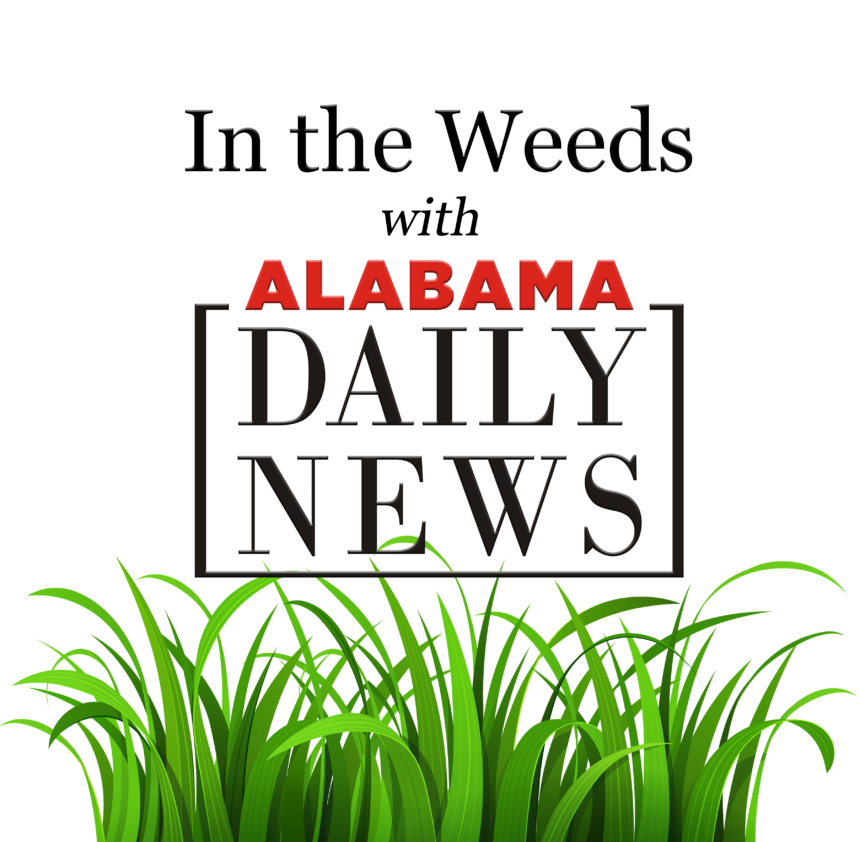 In The Weeds with State Finance Director Kelly Butler