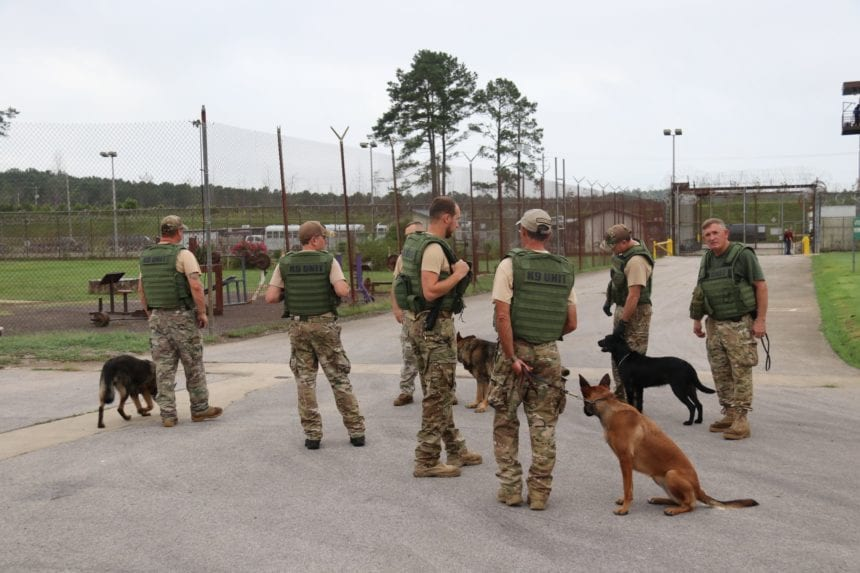Police dog injured after sniffing drugs during prison search