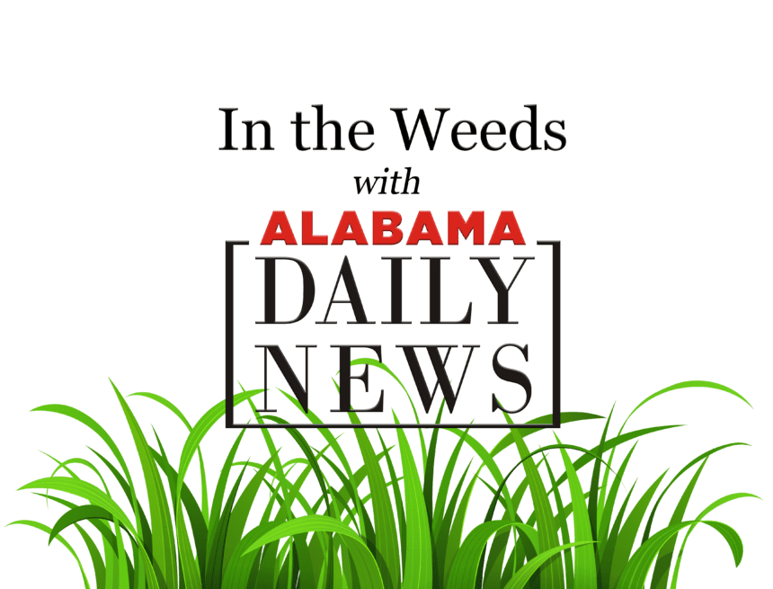 In the Weeds with Sen. Doug Jones