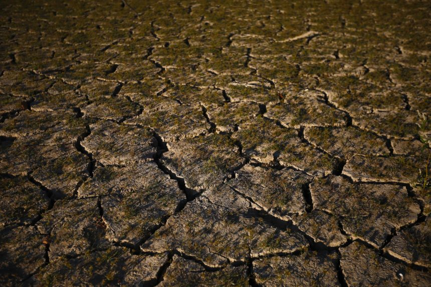 'Flash drought' brings dust and dread to Southern farmers