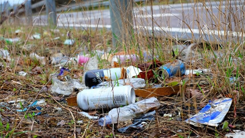 State trying to reduce $7M cost of cleaning up litter